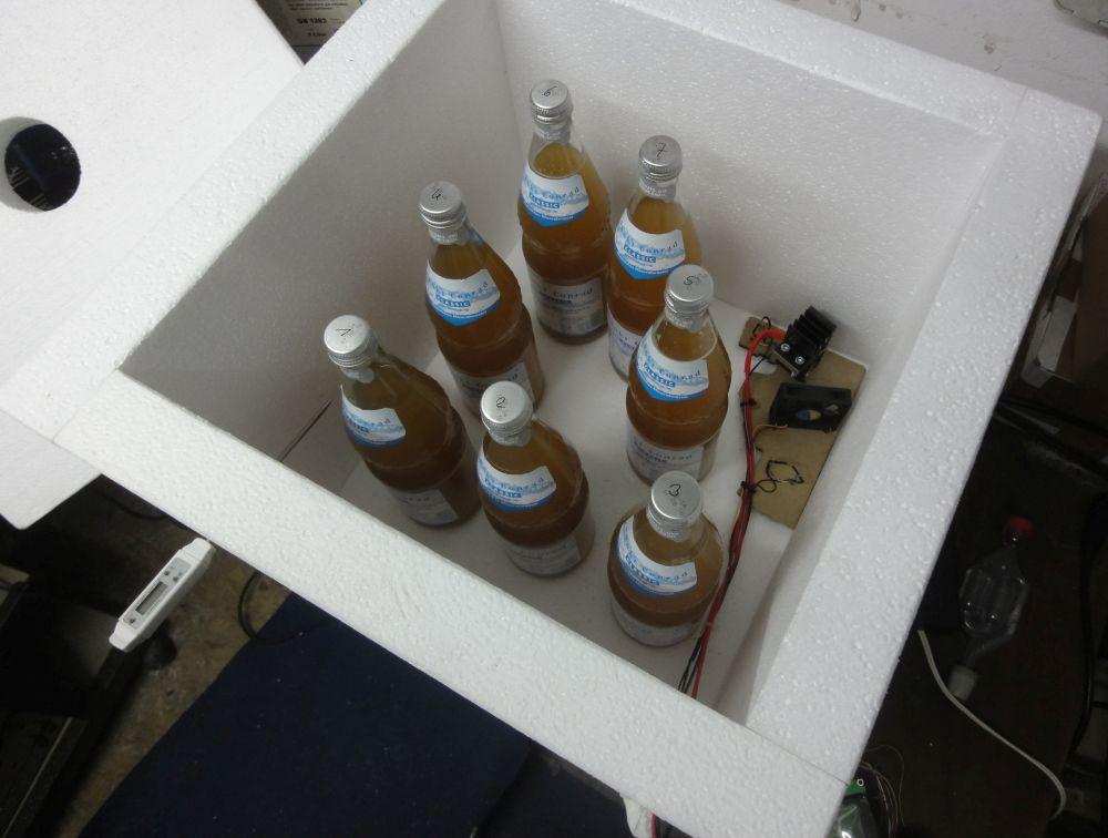 Flaschengärung in der Gärbox - rechts am Boden die Heizung aus 3D-Drucker Bauteilen
